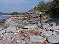 Bute, Rocks - geograph.org.uk - 182551.jpg