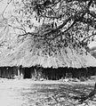 COLLECTIE TROPENMUSEUM Het paleis van de vroegere Sukuma koning bij Mwanza TMnr 20014587.jpg