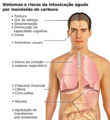 CO toxicity symptons (pt).png