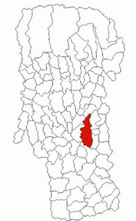 Călinești, Argeș Commune in Argeș, Romania