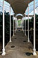 Camellia House, Wollaton Hall, Nottingham (15).jpg