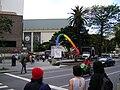 Caminhada lésbica 2009 sp 2.jpg