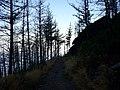 Camino Primitivo, Embalse de Grandas de Salime 03.jpg