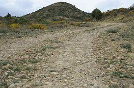 Camino de Bodigas.JPG