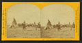 Camp of Pawnee Indians on the Platte Valley, by Carbutt, John, 1832-1905.png