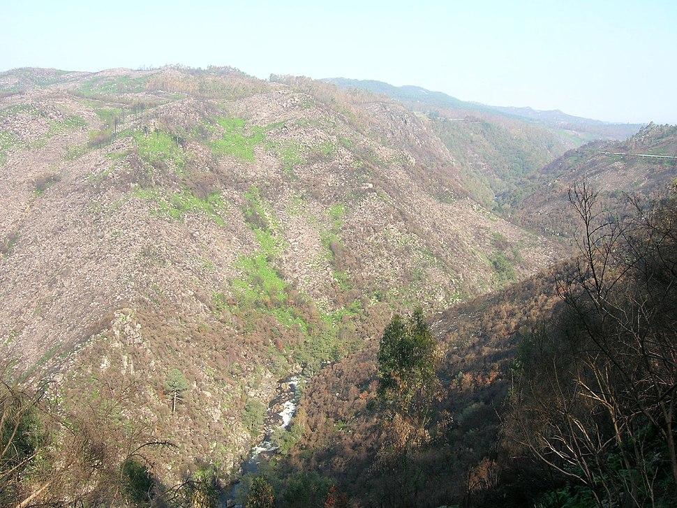 Canón do Oitavén - Pazos de Borbén - Pontevedra