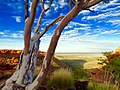 Canyon of the Kings, Kings Canyon, Watarrka National park, NT.jpg
