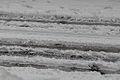 Car Tracks in Jerusalem Snow 2013 (8365953313).jpg