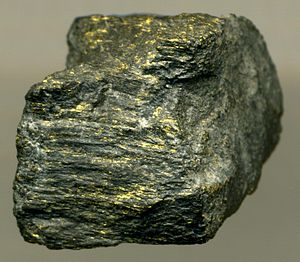 Witwatersrand Basin - Carbon Leader Gold Ore,  Blyvooruitzicht Gold Mine, Carletonville Goldfield, West Witwatersrand. The Carbon Leader is  a blackened, hydrocarbon-rich stromatolitic interval richly impregnated with native gold  and uraninite. This is a paleoplacer deposit, part of an ancient alluvial fan succession.