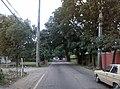 Carretera Hacia Turmero desde Guayabita - panoramio.jpg