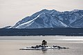 Carrington Island and Mount Sheridan (24980290281).jpg