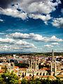Catedral de Burgos desde el Castillo.jpg