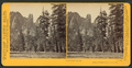 Cathedral Spires, Yosemite Valley, Mariposa County, Cal, by Watkins, Carleton E., 1829-1916 5.png