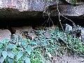 Caverna natural.jpg