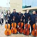 Cello Studio.jpg