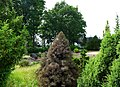 Chüttlitz (Salzwedel) - Friedhof.jpg