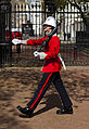Changing of the Guard - Sentry of the Royal Gibraltar Regiment.jpg
