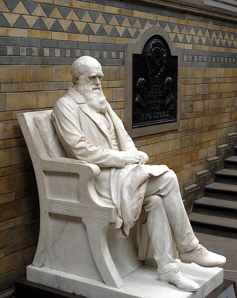 File:Charles Darwin statue 5665r.jpg