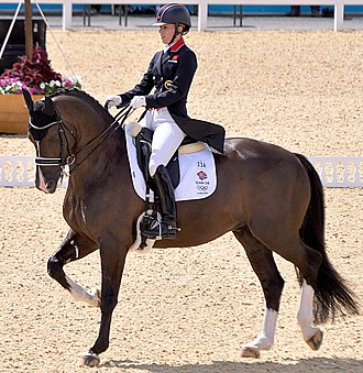 Dressage - An upper level dressage horse performs a series of movements in which they will be judged upon by a panel of judges.