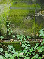 Chenstochov ------- Jewish Cemetery of Czestochowa ------- 111.JPG