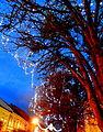 Christmas14Slovakia1.JPG