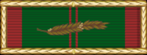 Civil Actions Medal - Image: Civil Action Unit Citation