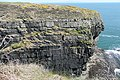 Coastal cliffs near Dunmore Head - geograph.org.uk - 1882455.jpg