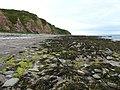 Coastline, Scapa Bay - geograph.org.uk - 855157.jpg