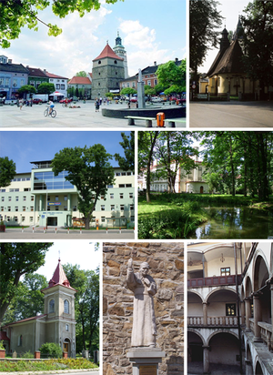 Żywiec - Top left: Market square with cathedral bell tower Top right: Holy Cross Church Middle left: Beskid Wyzsza University Middle right: Zamkowy Park Bottom left: Saint Mark Church Bottom middle: Monument of Pope John Paul II Bottom right: Habsburg Palace