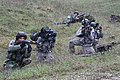 Combined Resolve III 141106-A-IR813-014.jpg