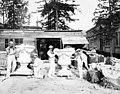 Construction crew and plasterers, Alaska-Yukon-Pacific Exposition, Seattle, Washington, ca 1908 (AYP 465).jpeg