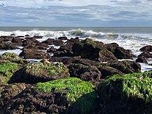 Pleasure Island (North Carolina) - Wikipedia