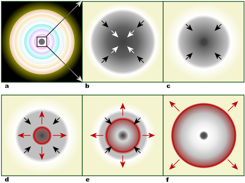 Within a massive, evolved star (a) the onion-layered shells of elements undergo fusion, forming an iron core (b) that reaches Chandrasekhar-mass and starts to collapse. The inner part of the core is compressed into neutrons (c), causing infalling material to bounce (d) and form an outward-propagating shock front (red). The shock starts to stall (e), but it is re-invigorated by a process that may include neutrino interaction. The surrounding material is blasted away (f), leaving only a degenerate remnant.
