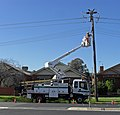 Country Energy line worker 01.jpg