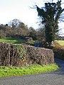 Country Lane near Bryn-yr-eithin - geograph.org.uk - 284786.jpg