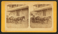 Cracker teams, from Robert N. Dennis collection of stereoscopic views.png