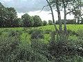 Cranny Townland - geograph.org.uk - 1453977.jpg