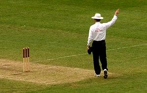 Umpire (cricket) - An umpire