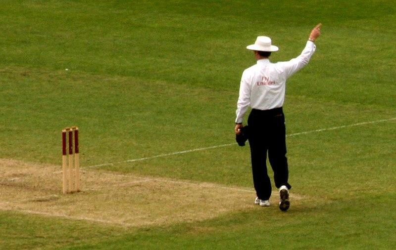 Cricket Umpire.jpg