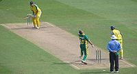 Cricket pic.jpg