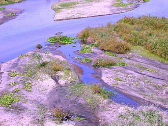 Crocodile River (Mpumalanga) - Image: Crocodile river Kruger Park 02