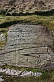 Cup-and-Ring-Marked Rock - geograph.org.uk - 1272857.jpg