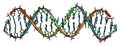 DNA Overview landscape orientation.png
