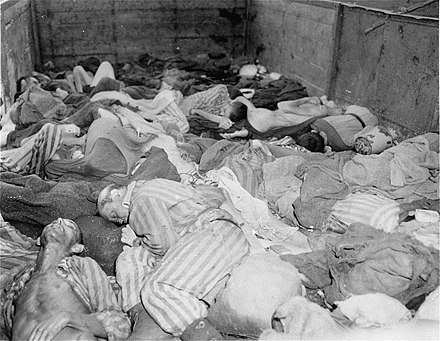 Bodies of 2,000-3,000 prisoners evacuated from Buchenwald in 40 sealed boxcars on 7 April 1945, arriving at Dachau on 28 April Dachau Death Train.jpeg