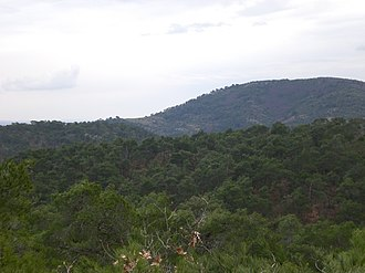 Dadia - Image: Dadia forest and hill