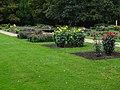 Dahliengarten, Großer Garten, Dresden (296).jpg