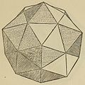 De divina proportione - Dodecaedron Elevatum Solidum.jpg
