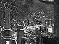 Dean Cemetery - geograph.org.uk - 139664.jpg