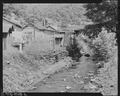 Debris-strewn stream which runs back of houses. Seepage from privies pollutes stream. Gilliam Coal and Coke Co... - NARA - 540830.tif