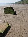 Debris on the beach - geograph.org.uk - 833398.jpg